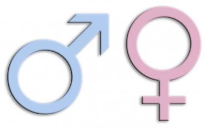 Frauen im Gemeinderat